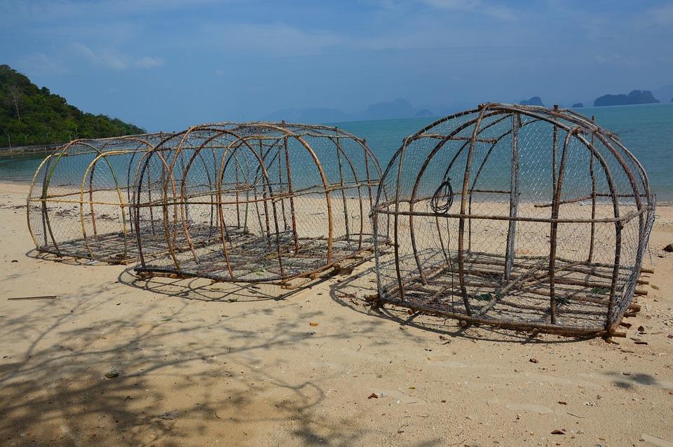 Peixe armadilha cestas praia foto gratuita no pixabay for Fish trap net