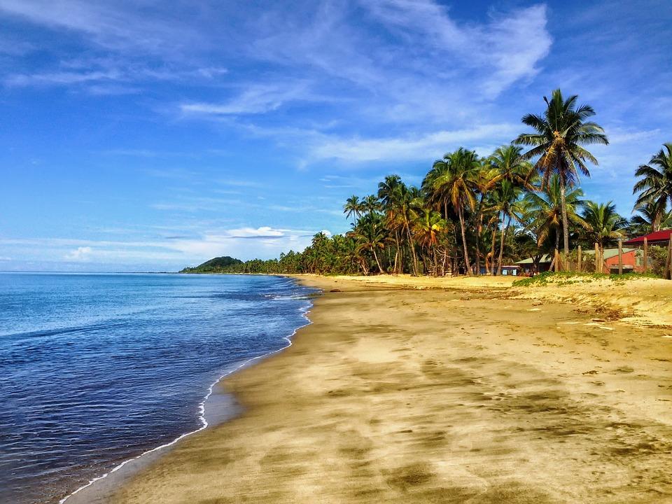 Free Photo Palm Trees Beach Beautiful