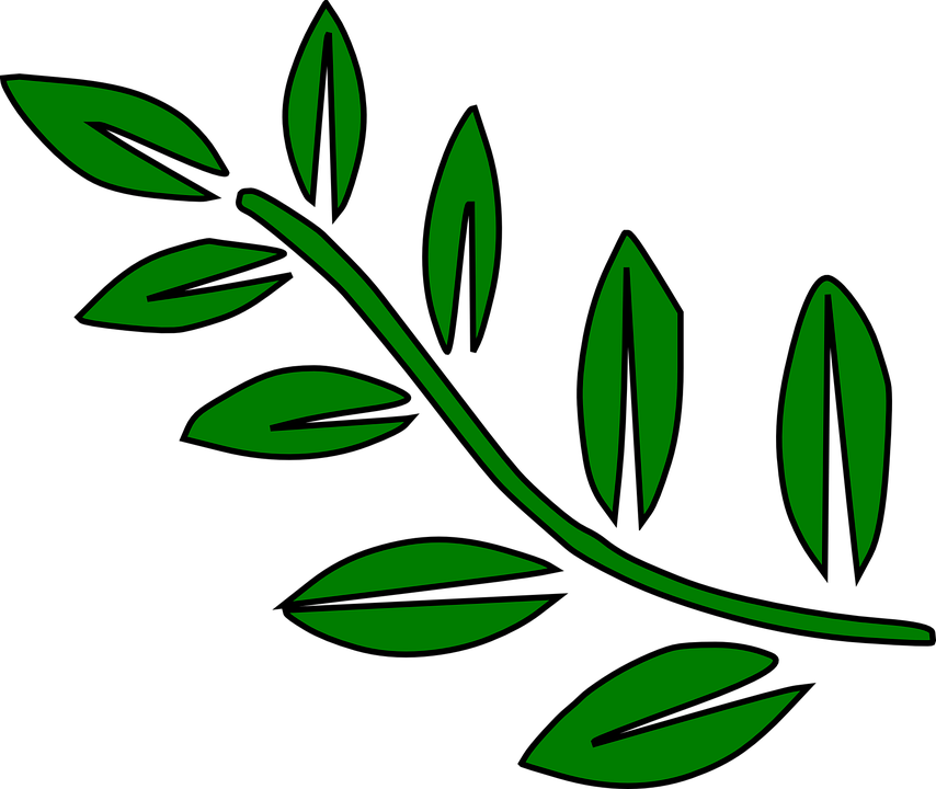 free clipart green leaf - photo #38