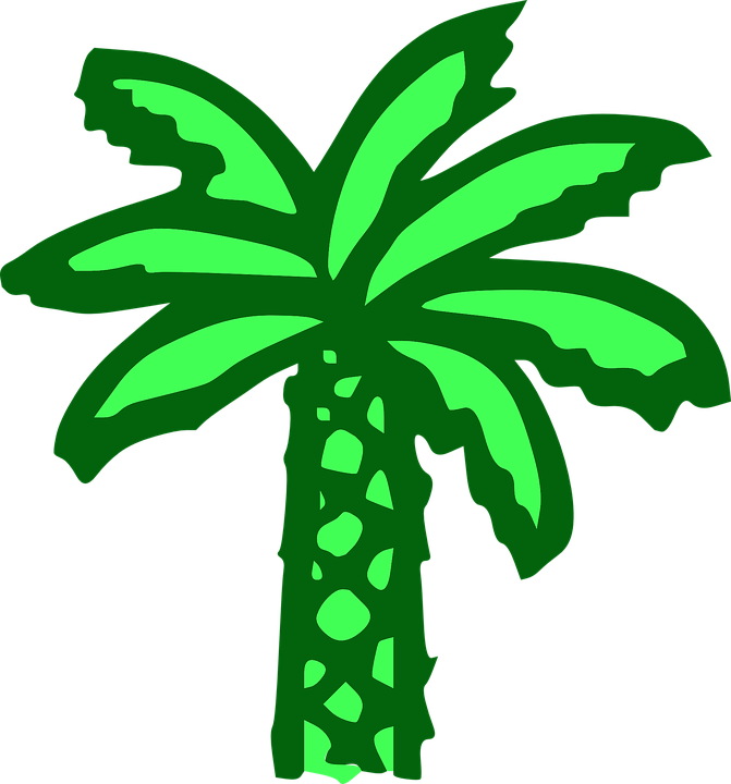 palm tree green beach banana free vector graphic on pixabay palm tree green beach banana free