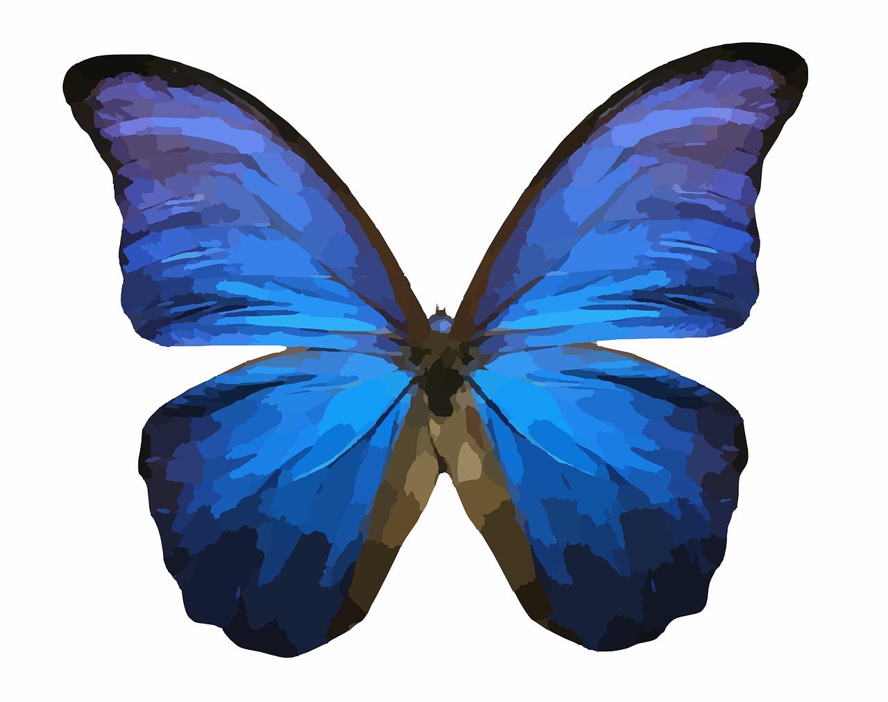 Стратегия форекс эффект бабочки