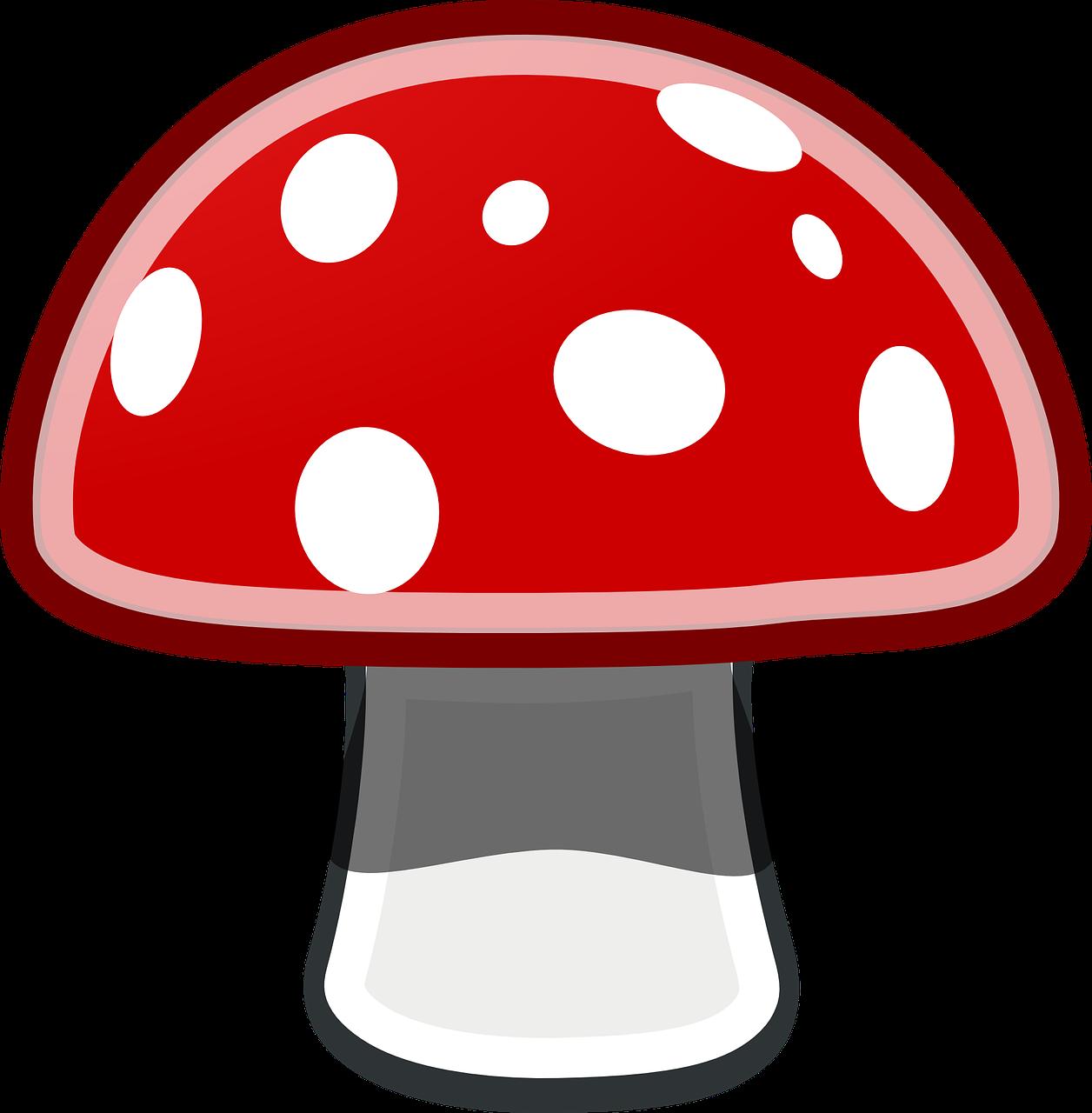 Рисунок мухомора красного