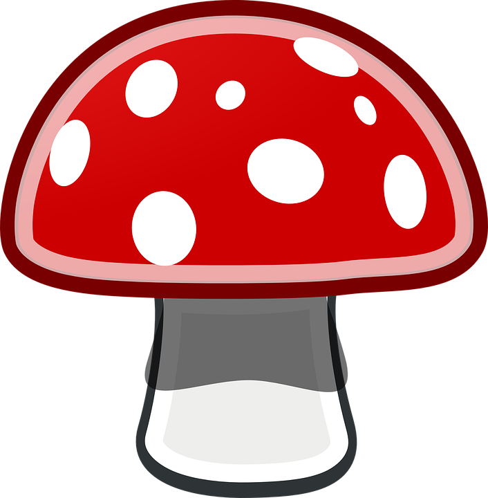 Fly Agaric Mushroom Red 183 Free Vector Graphic On Pixabay