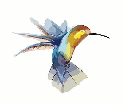 Kolibřík, Pták, Křídla, Zvíře, Rychle
