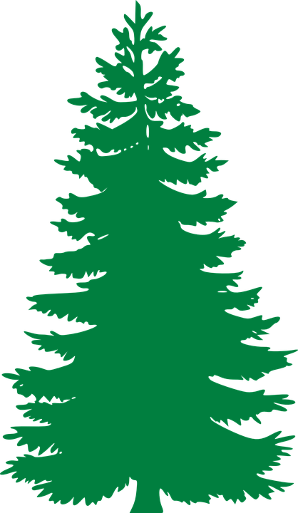 Free vector graphic Fir Evergreen Trees Silhouette Free