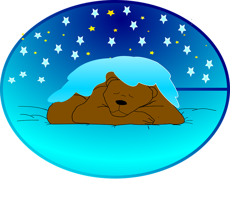 free vector graphic winter sleep hibernation bear. Black Bedroom Furniture Sets. Home Design Ideas