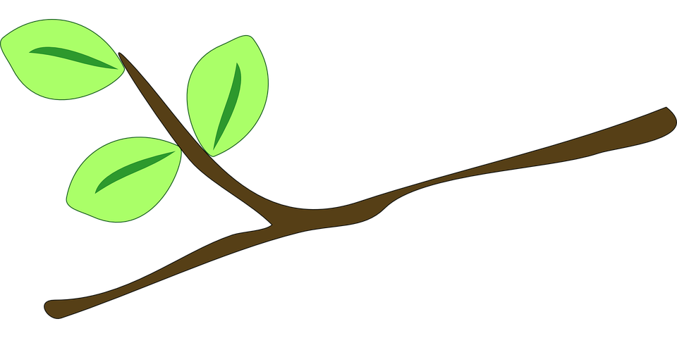 branch leaves twig free vector graphic on pixabay rh pixabay com royalty free graphics images royalty free graphics food crisis