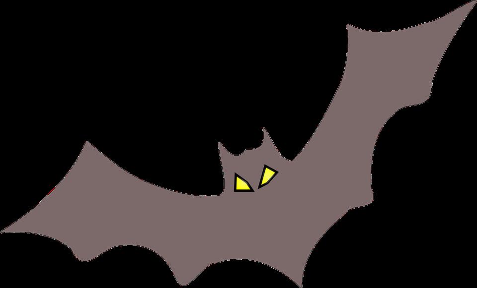 Fledermaus Halloween Gruselig · Kostenlose Vektorgrafik auf Pixabay