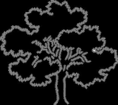 100 Free Gray Tree Tree Illustrations Pixabay