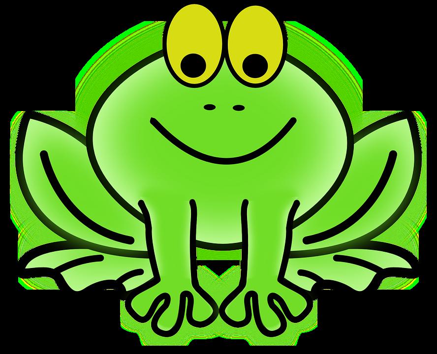 frog amphibian animal free vector graphic on pixabay rh pixabay com vectorfog c100 vectorfog