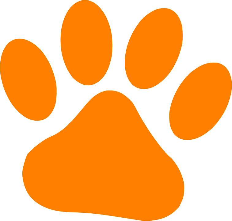Gambar Vektor Gratis Cakar Kucing Orange Tapak Hewan