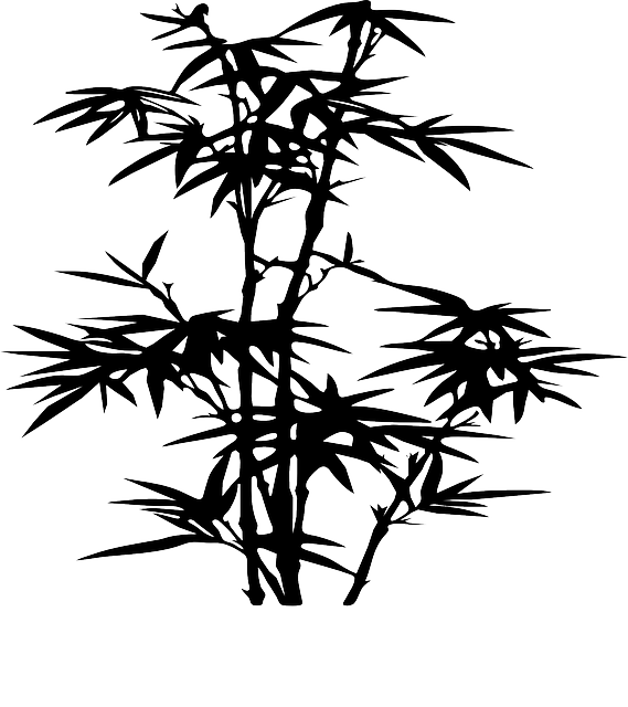 free vector graphic bamboo plant black silhouette