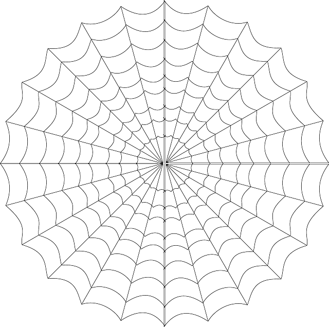 Free Vector Graphic Cob Web Spiderweb Spider S Web