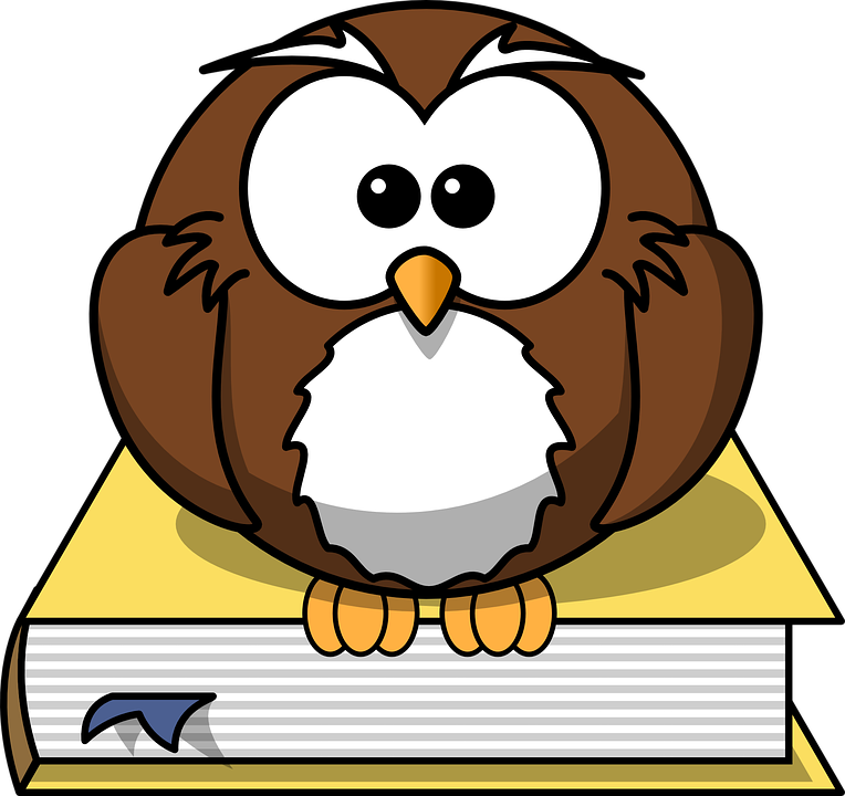 Vi lærer deg engelsk gratis gjennom vårt flotte førstekurs!