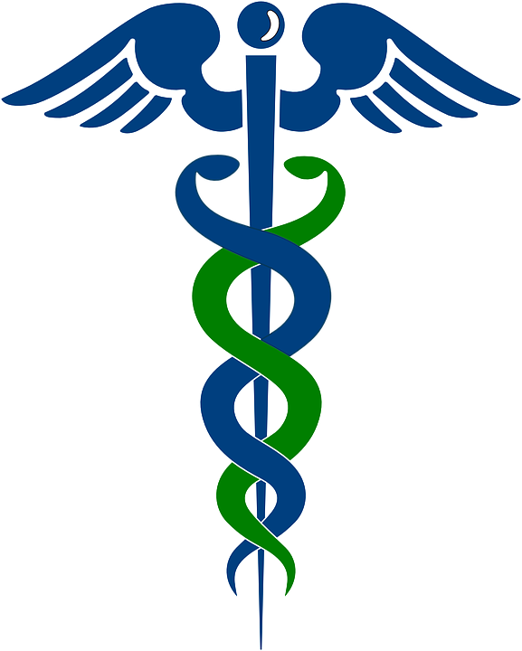 Rod Of Asclepius Doctor Pharmacy Free Vector Graphic On Pixabay