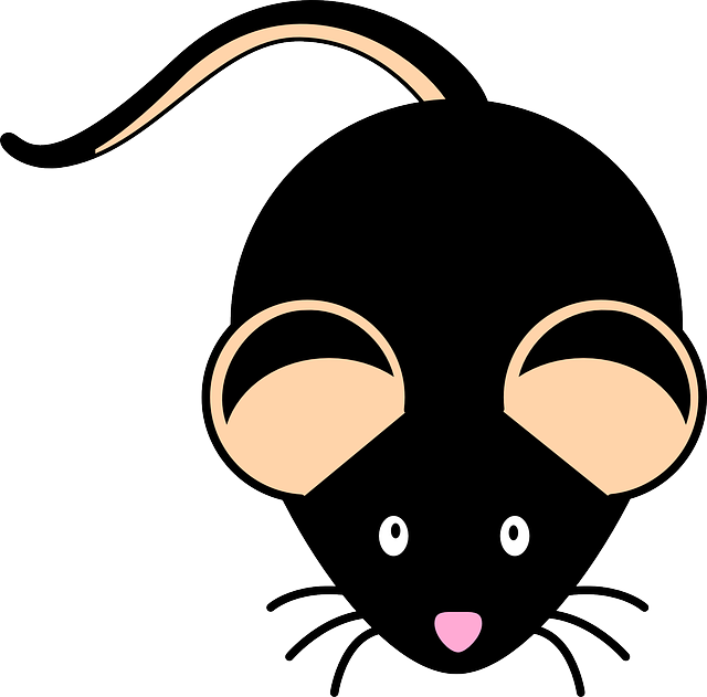Mouse Black Mice · Free vector graphic on Pixabay