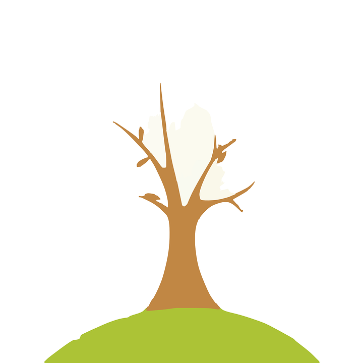 Free vector graphic: Deforestation, Dead Tree, Autumn ...