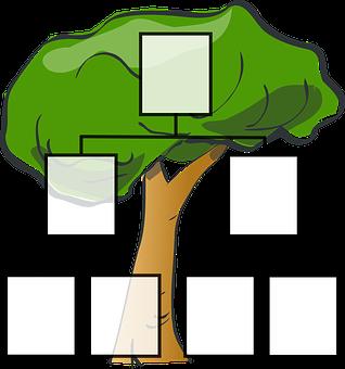 Family Tree, Family, Ancestors, Tree
