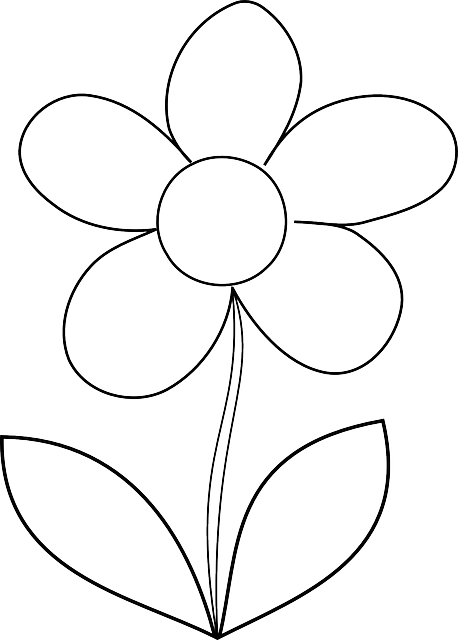 free vector graphic  flower  daisy  spring  outline