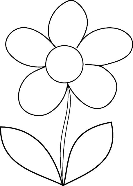 Flower Daisy Spring Free vector
