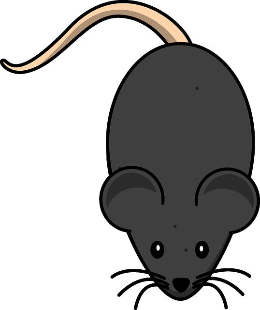 Мышка рисунки детей