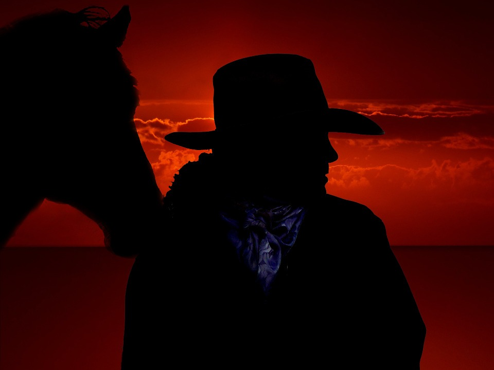 Free Photo: Horse, Cowboy, West, Ride, Usa