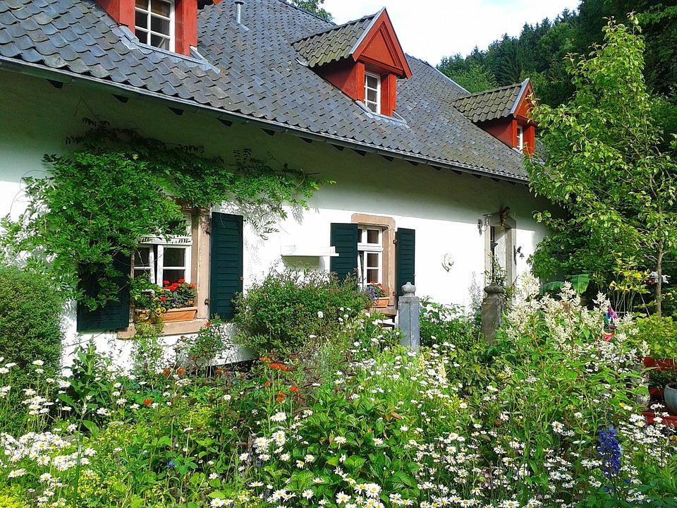 庭, 花, フローラ, 植物, 家, バリアブル, ファサード, 建物, 工場, ロマンス, ロマンチックな