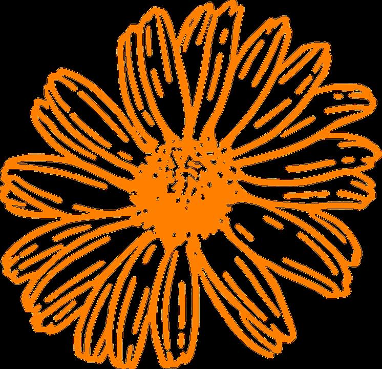 image vectorielle gratuite fleur marguerite orange image gratuite sur pixabay 303180. Black Bedroom Furniture Sets. Home Design Ideas