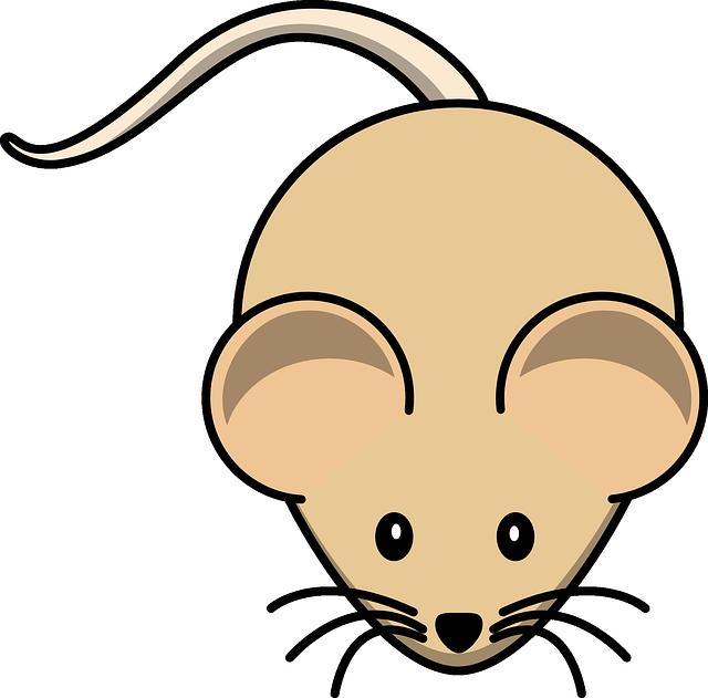 Мышка рисованная картинка