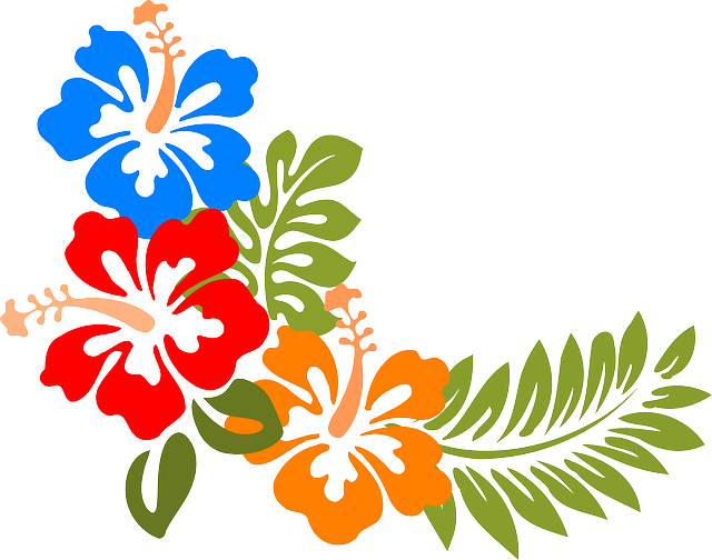 hibiscus hawaii flowers free vector graphic on pixabay rh pixabay com hawaiian hibiscus flower vector hawaiian flower vector art