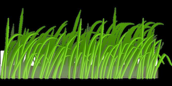 100 Free Meadow Grass Vectors Pixabay