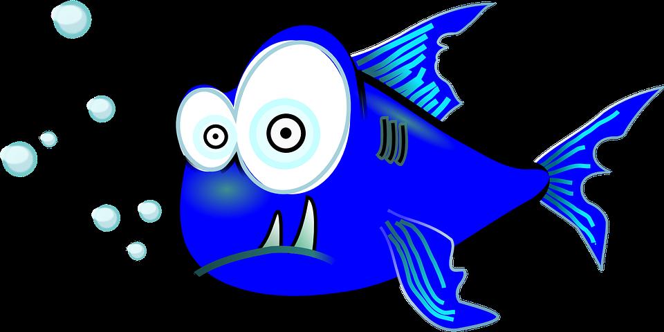 Unduh 4400 Koleksi Gambar Ikan Aneh Dan Lucu HD Terbaru