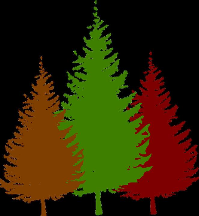 tree logo images