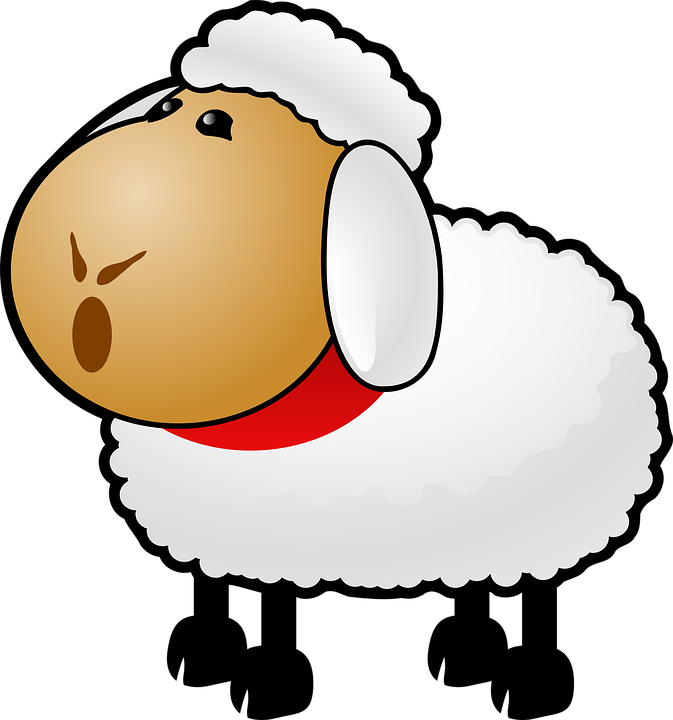 900 Gambar Hewan Domba Kartun Gratis Terbaik