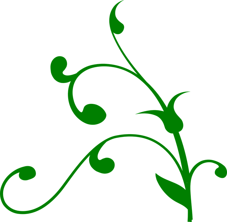 Free vector graphic: Vine, Swirl, Green, Nature, Floral ...