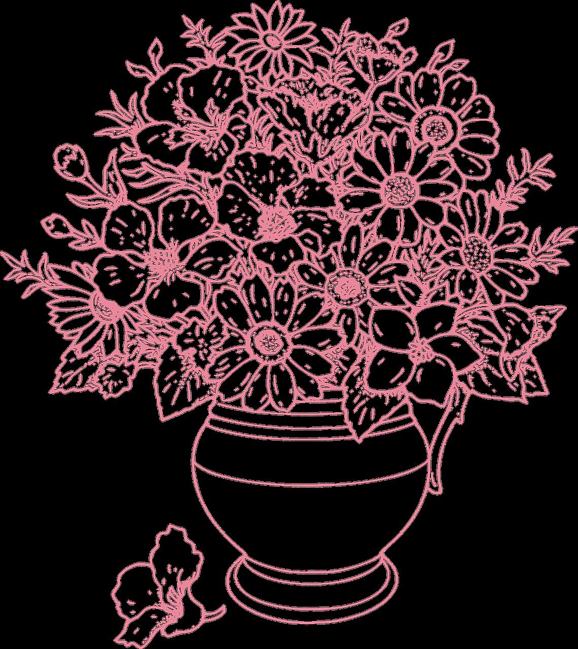 фото с названиями цветов для клумбы
