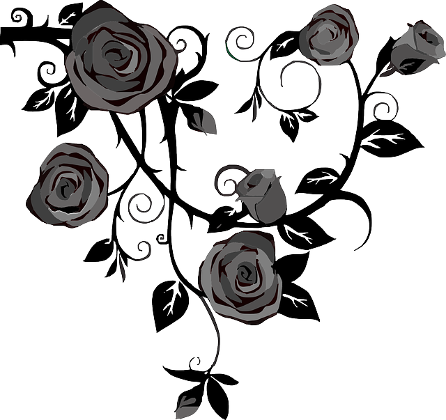 roses flowers gray  u00b7 free vector graphic on pixabay