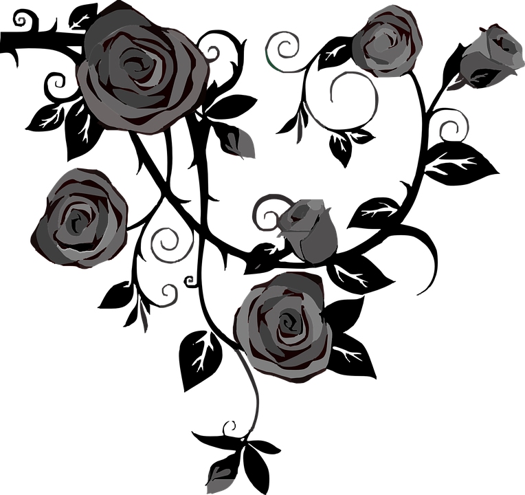 Roses Flowers Gray Free Vector Graphic On Pixabay