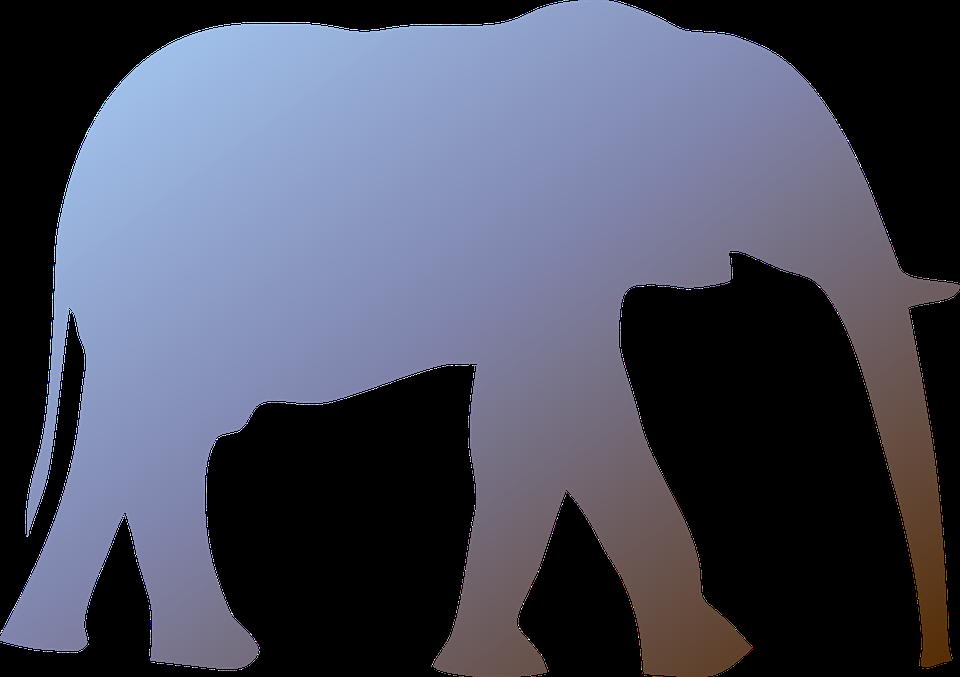 Elephant, Mammal, Animal, Wild, Wildlife