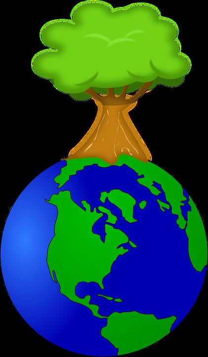 Bildresultat för miljö