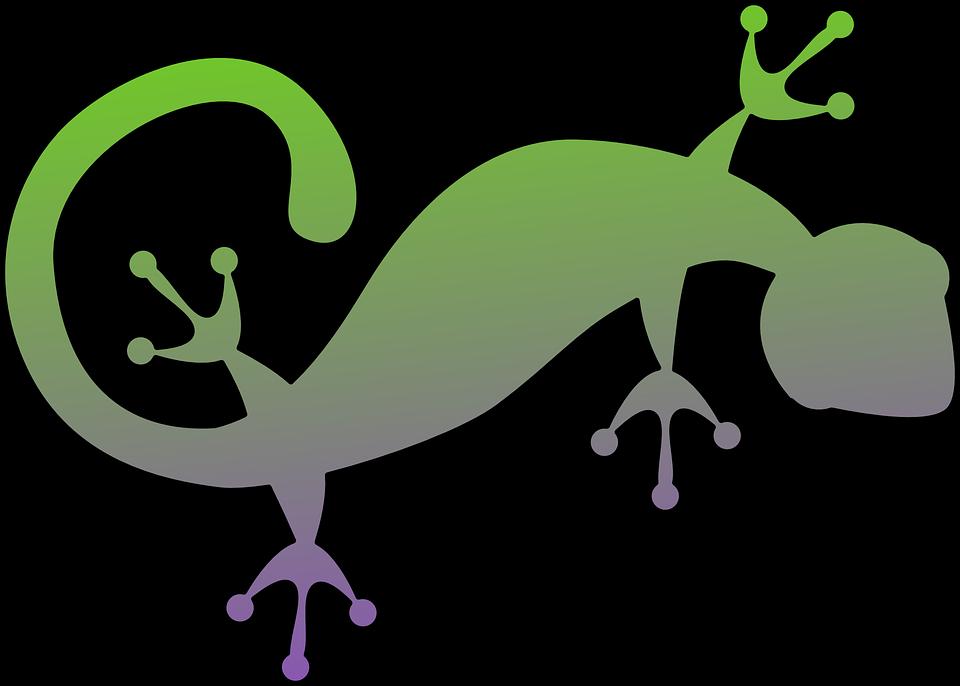 Geco salamandra lucertola grafica vettoriale gratuita su for Disegno geco