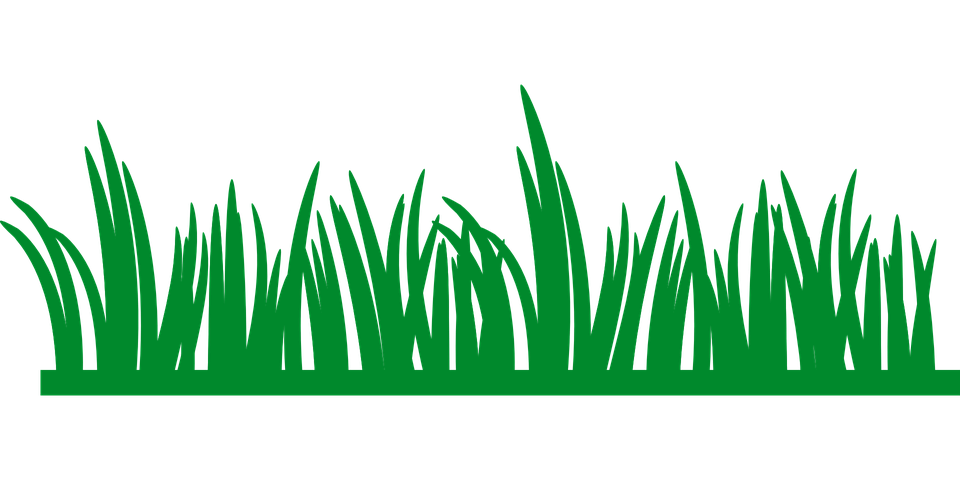 grass lawn green  u00b7 free vector graphic on pixabay seaweed clip art gold seaweed clip art free svg