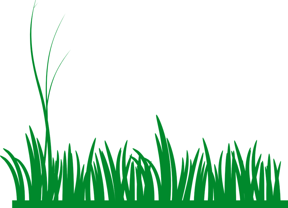 Grass Lawn Green 183 Free Vector Graphic On Pixabay
