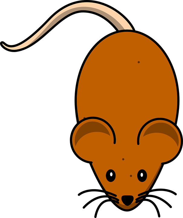 Mice Mouse Brown · Free vector graphic on Pixabay