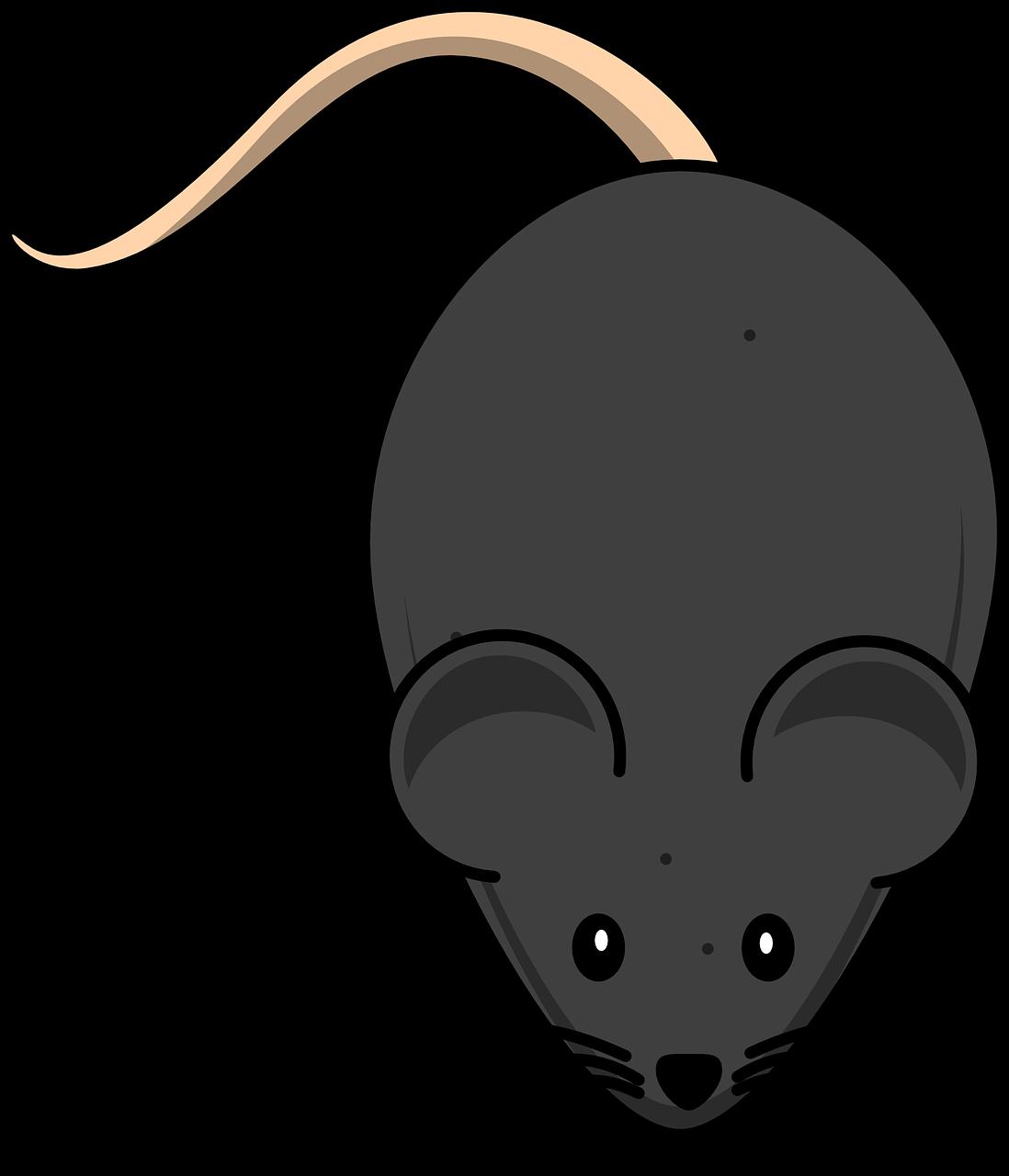 Картинки для мыши, моменты смешариков