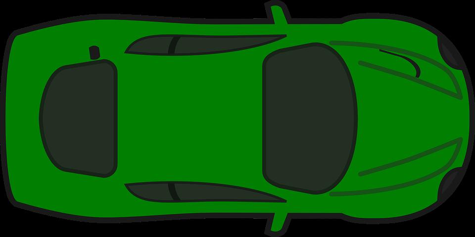 Bird On A Car Racing Steering Wheel