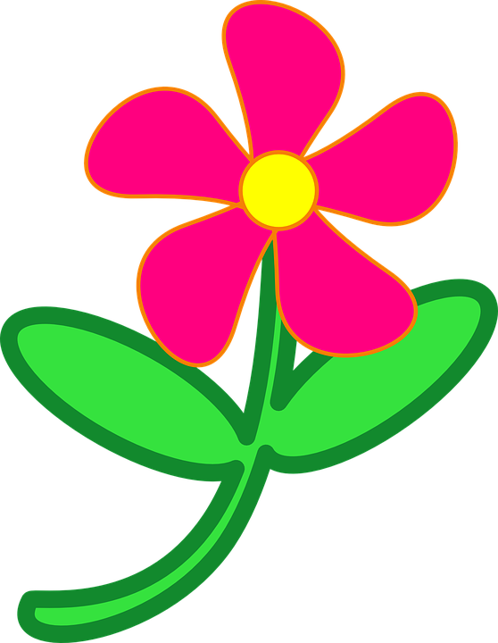Flower Pink Daisy 183 Free Vector Graphic On Pixabay