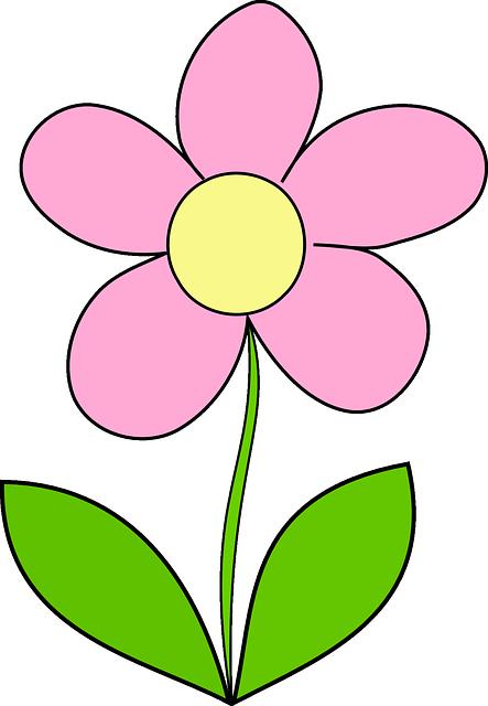 Flor Margarida Amarela · Gráfico vetorial grátis no Pixabay