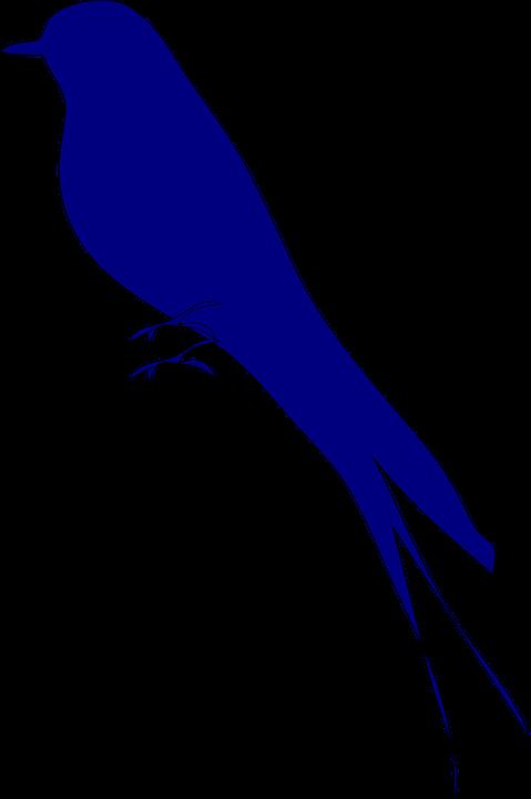 Love Bird Burung Biru Gambar Vektor Gratis Di Pixabay