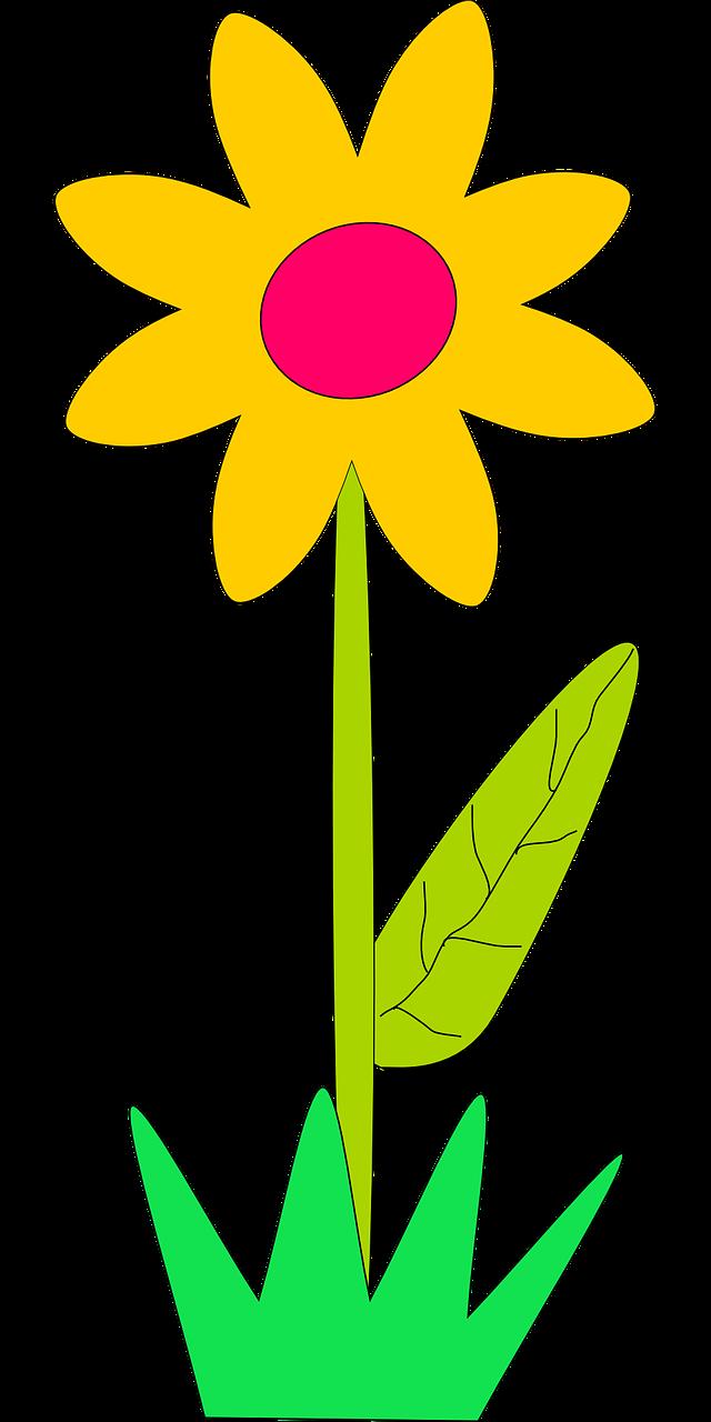 уютные картинки к слову цветочек флизелиновой основе сравнить